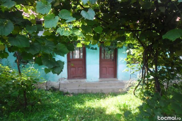 Casa cu gradina Topesti- tismana- gorj