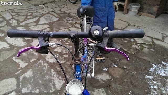 Bicicleta cu viteze